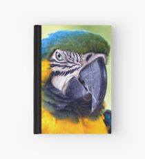 Macaw Parrot Hardcover Journal
