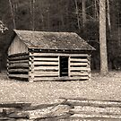 Early Blacksmith Shop  by Gary L   Suddath