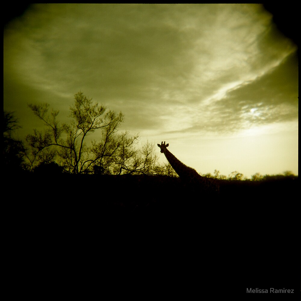 G silhouette by Melissa Ramirez