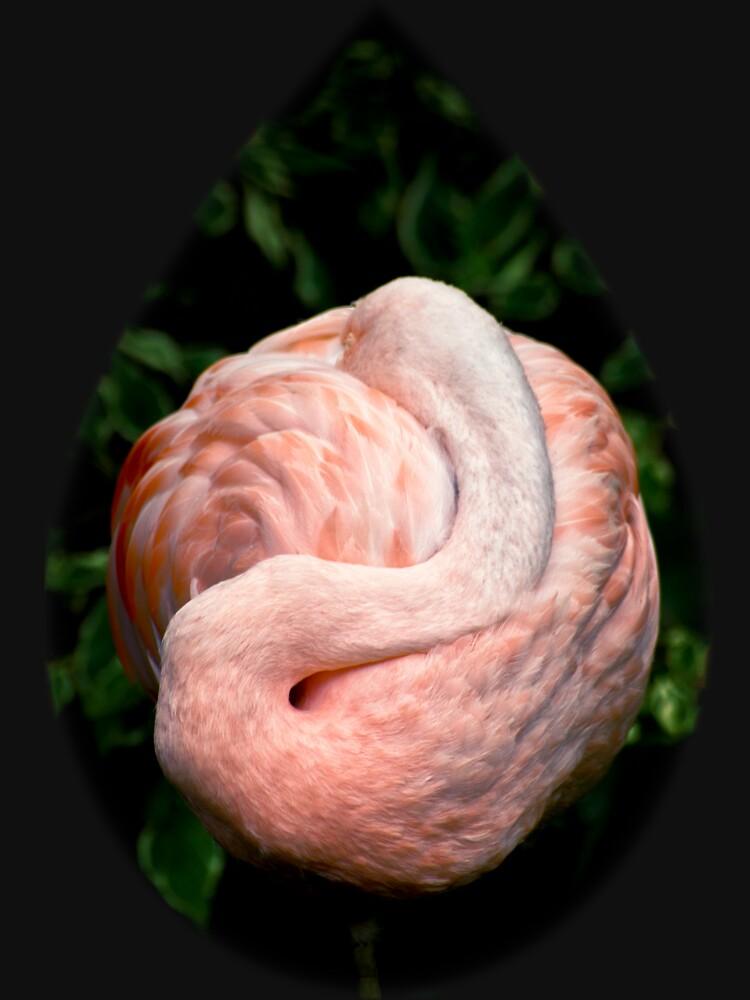 Flamingo Dreams by InspiraImage
