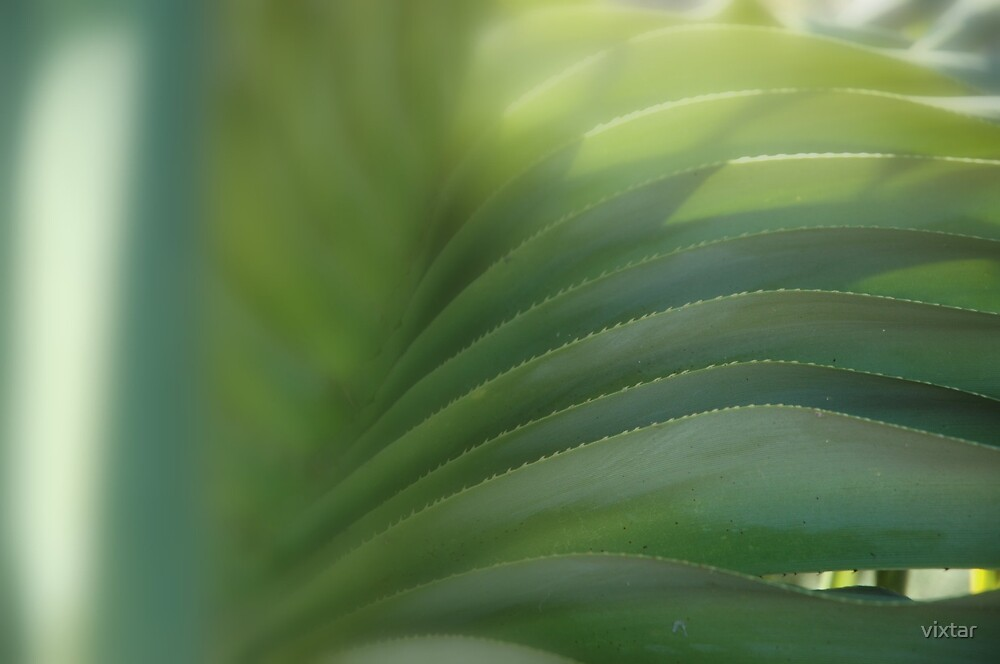 green by vixtar