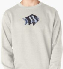 Damselfish in Blue Coral Pullover