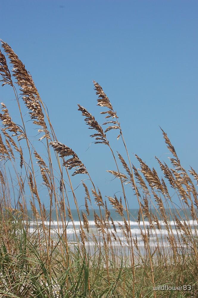 Atlantic Ocean by wildflower83
