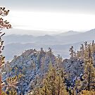 View from Palm Springs Tramway Snowy Mountain Station by Buckwhite