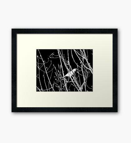 The Cry Framed Print