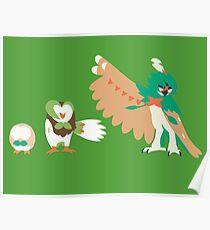 Rowlet Evolution Poster