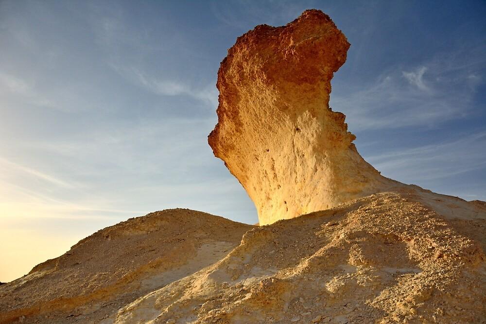 Limestone formation in Bir Zekreet desert, Qatar