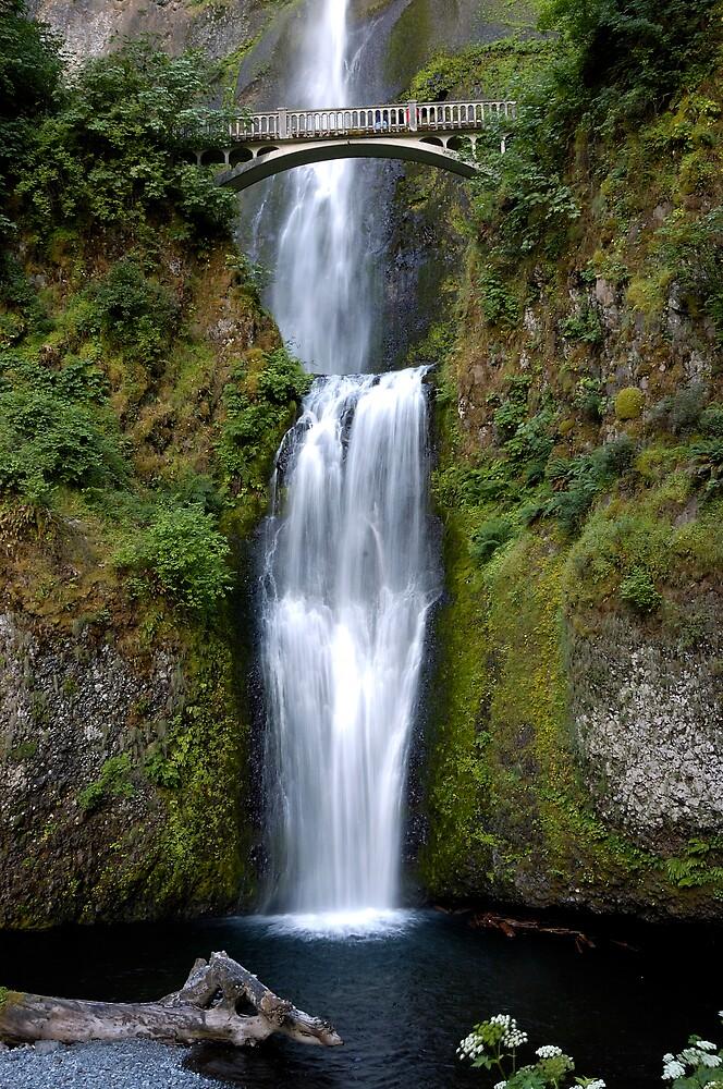 Multnomah Falls by Duncan Biggs