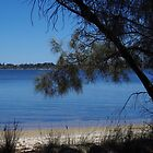 The Swan River from the Milyu Nature Reserve (Western Australia) by lezvee