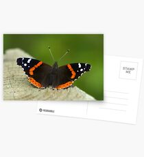 Red Admiral Postcards