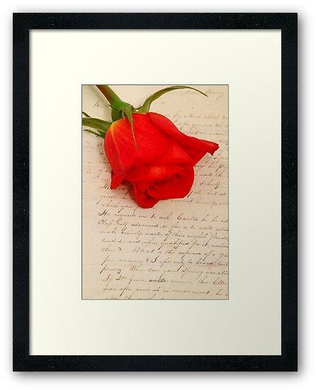 my love by kostas tsipos
