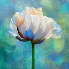 Painterly Poppy flower dramatic floral art by Glimmersmith
