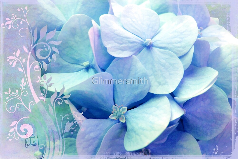 Bliss, Lavender Baby Blue Periwinkle Hydrangeas dreamy colors by Glimmersmith