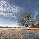 Frosty Winter Morning by StephenRB