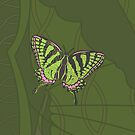 Celtic Swallowtail by Valerie Hartley Bennett