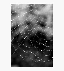 Web Photographic Print