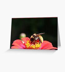 Bumble Bee Greeting Card
