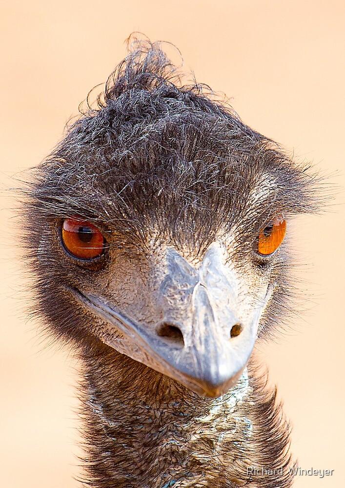 Emu Eyes by Richard  Windeyer