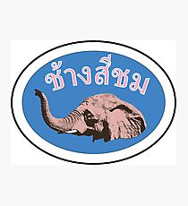 Pink Elephant Thailand Photographic Print
