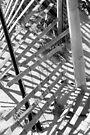Love of Lines... by LindaR