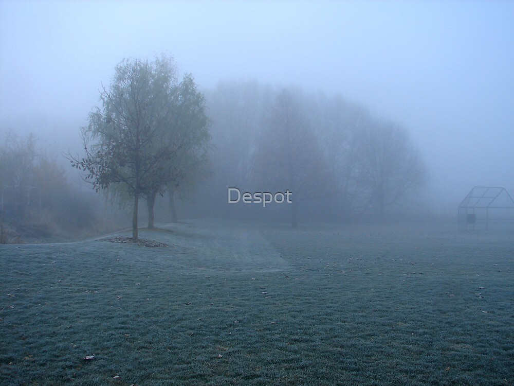 Silence by Despot