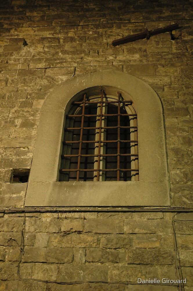 Old Italian Window by Danielle Girouard