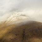 Cloudy Mountain by Lynne Morris