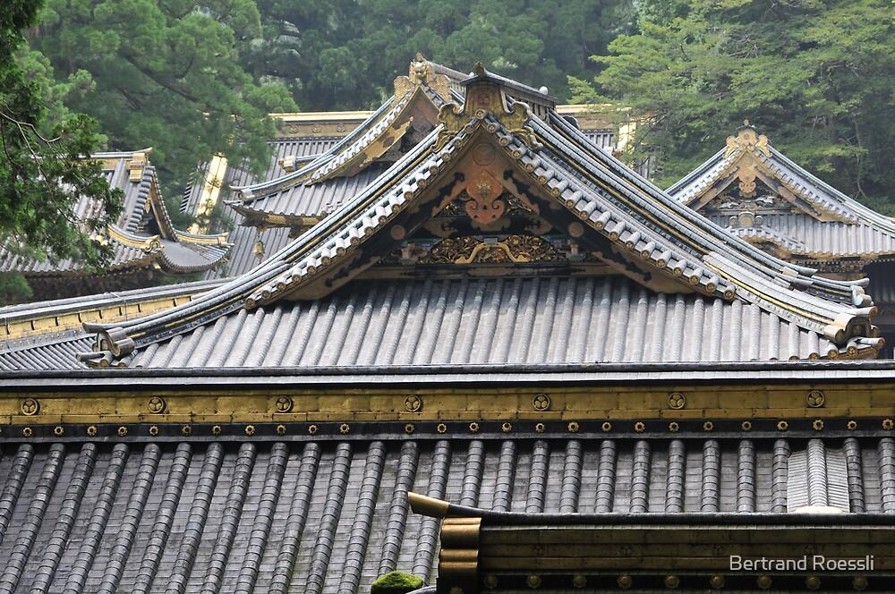 Toshogu, Nikko, Japan by Bertrand Roessli
