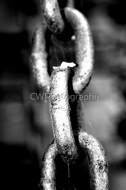 Chain Link by CWPhotography