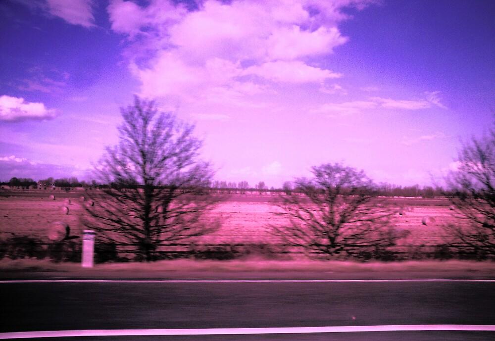 car-view by darkmonkuk