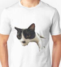 Mr Hitler Kitty - Sticker T-Shirt