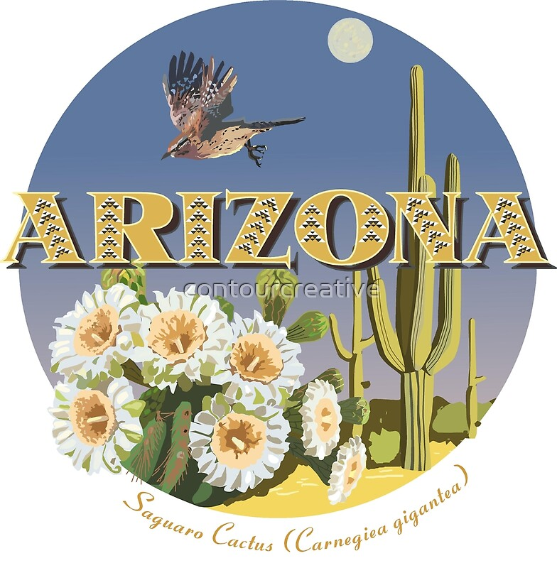 arizona state flower bird by contourcreative