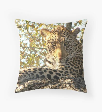 Do not disturb...! Throw Pillow