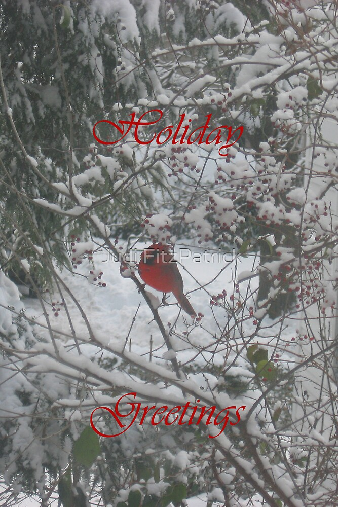 Cardinal with Greeting by Judi FitzPatrick
