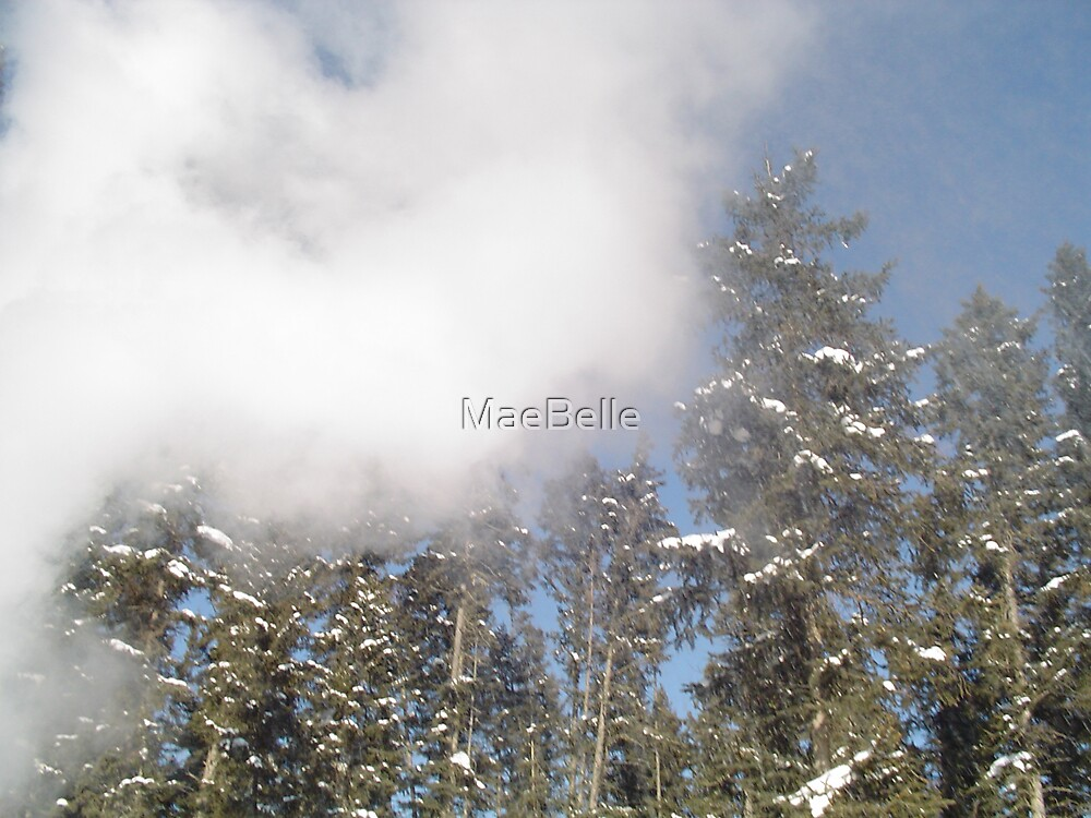 Steam at -40 degrees by MaeBelle