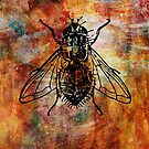 Fly Grunge by Joanne Phillips