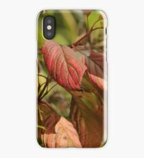 From Green to Pink iPhone Case/Skin
