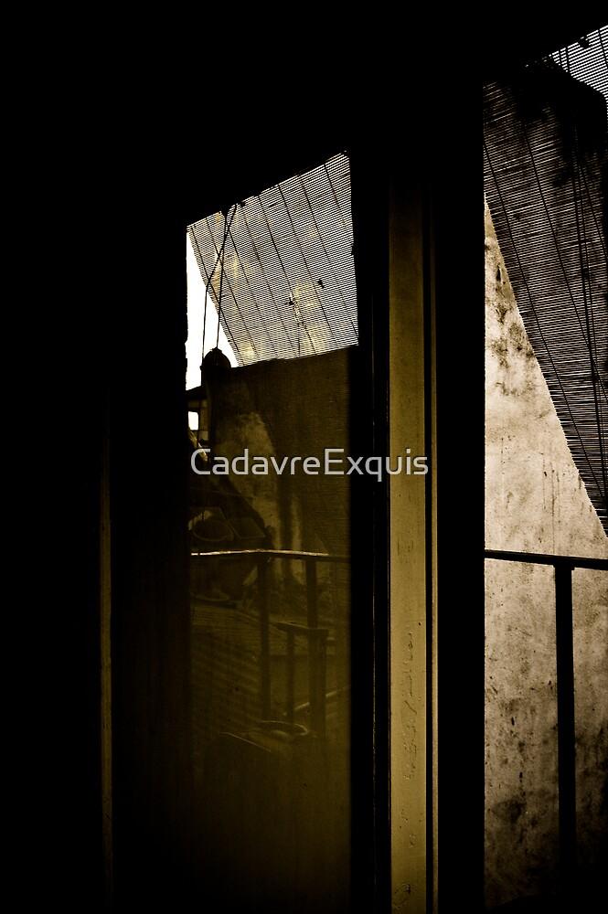 shadows & reflexions II by CadavreExquis