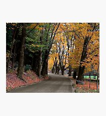Bend in the Buffalo Road Photographic Print