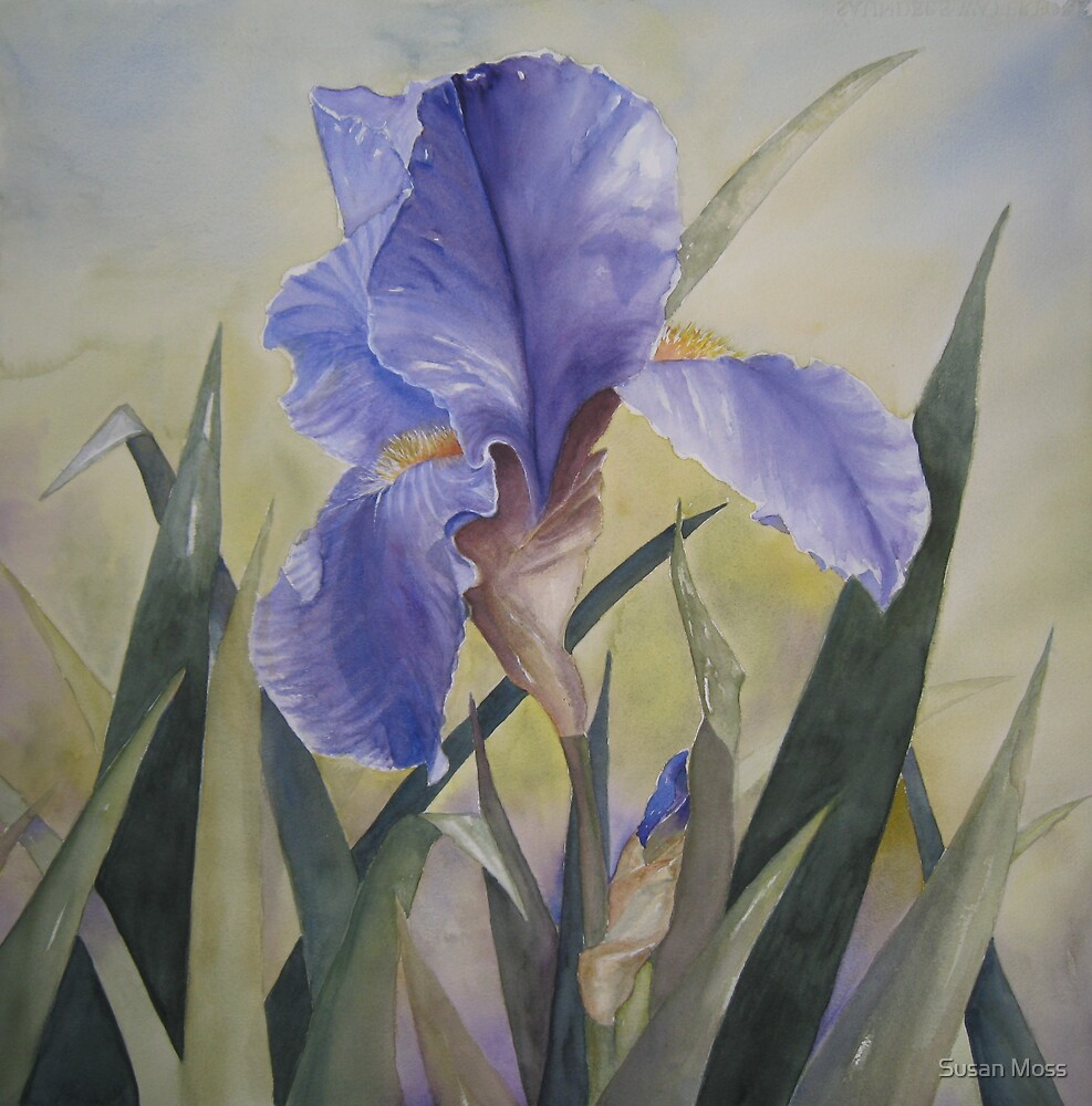 Spring Rhapsody by Susan Moss