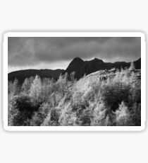 Pike O' Stickle & Loft Crag from Tarn Hows Sticker