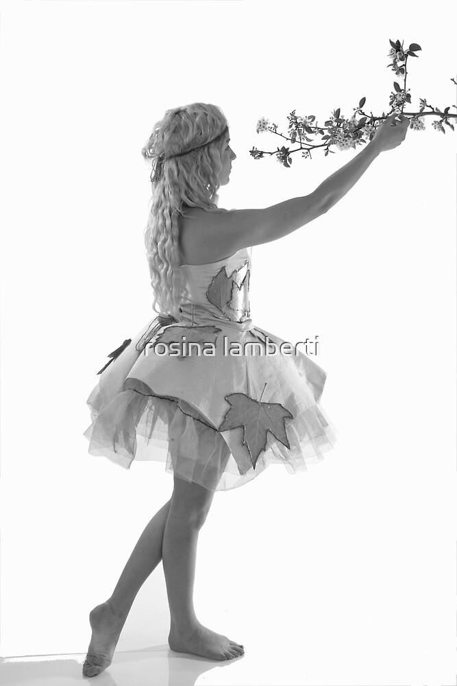 Amy by Rosina  Lamberti