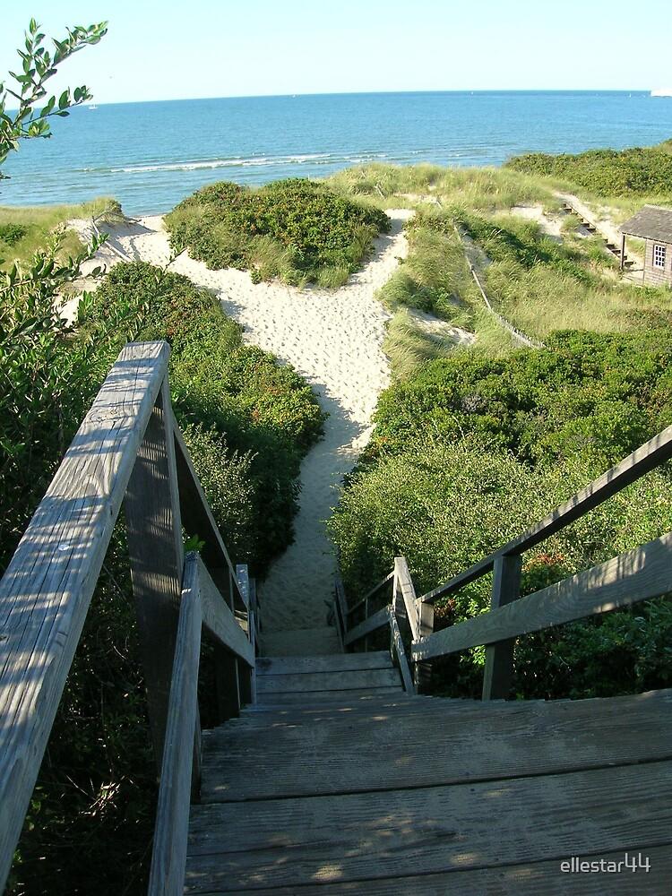 Steps Beach, Nantucket, MA by ellestar44