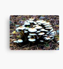 Braving it out together Canvas Print