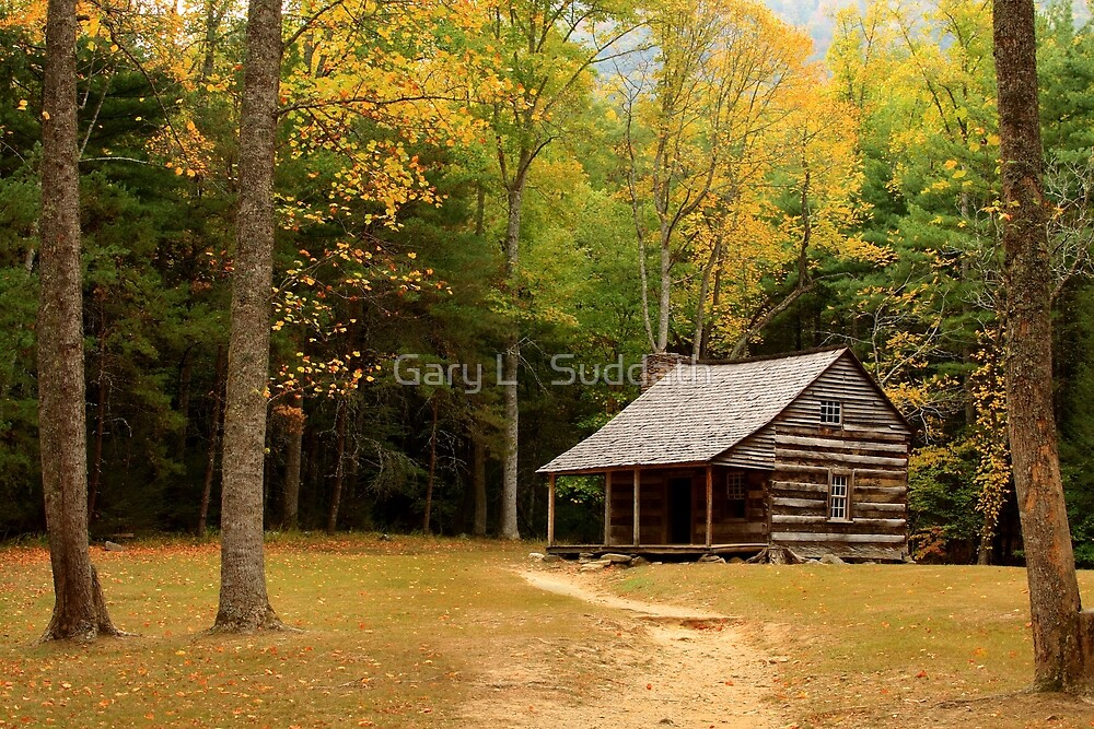 Autumn In The Cove by Gary L   Suddath
