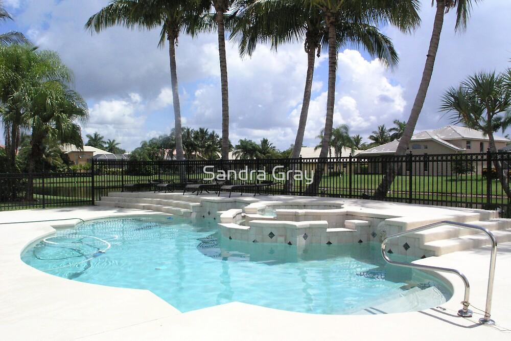 Florida Swimming Pool by Sandra Gray