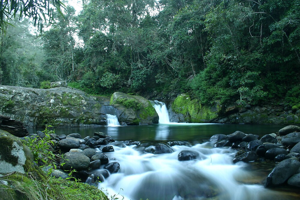 Ladies Well, Barrington Tops, NSW, Australia. by SkyPhotos
