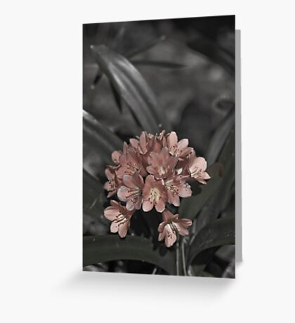 A Dreary Moment Greeting Card