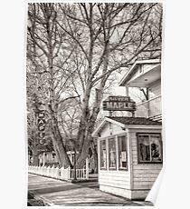 Silver Maple Inn Poster