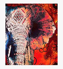 Indian Sketched Elephant Photographic Print